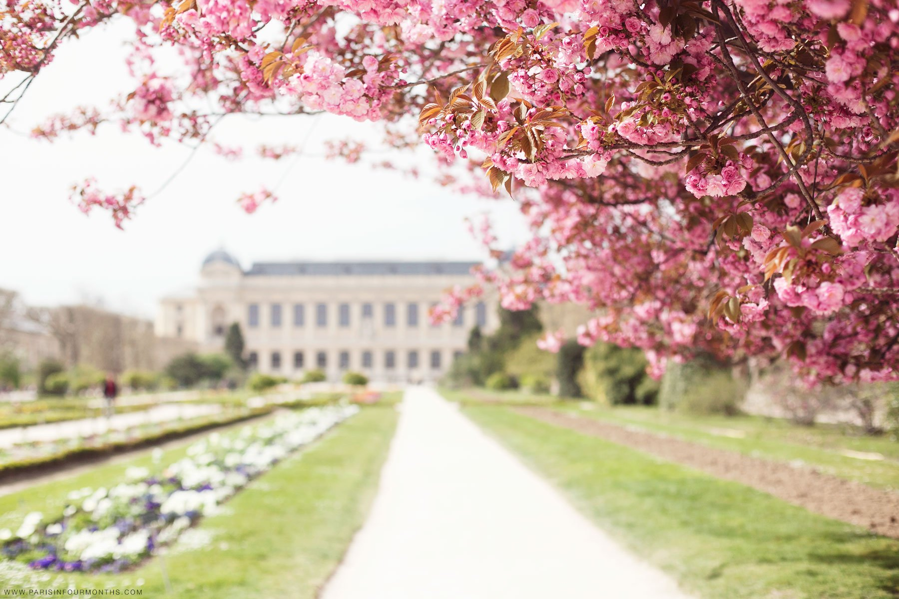 spring paris playlist