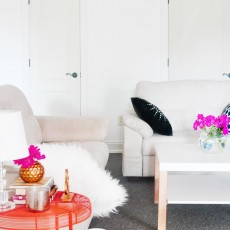 Pop of Color with Wayfair 6