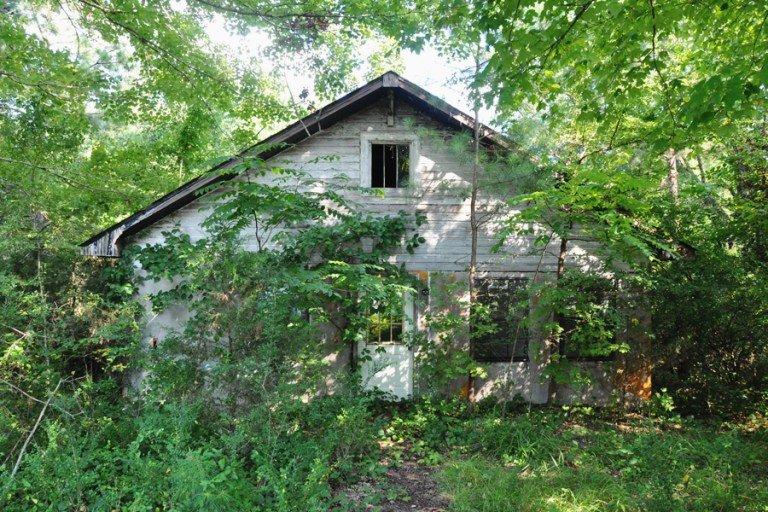 Home Renovation Progress Report